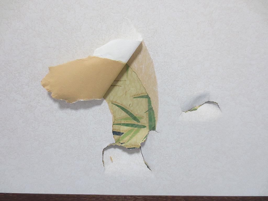 ロシ子に破られた襖です。