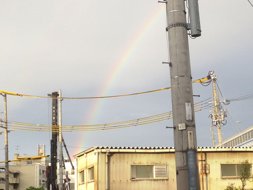 どしゃ降りの後の虹がきれい。