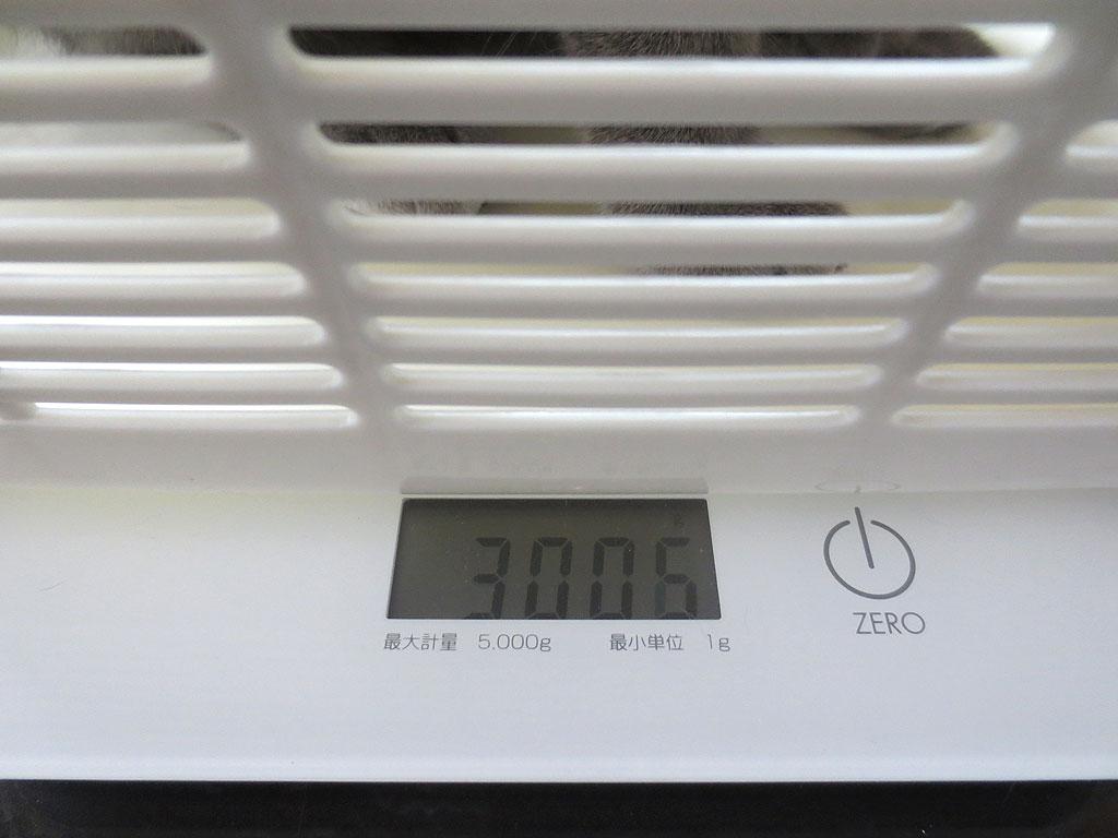 ロシ子の体重、3006gです。