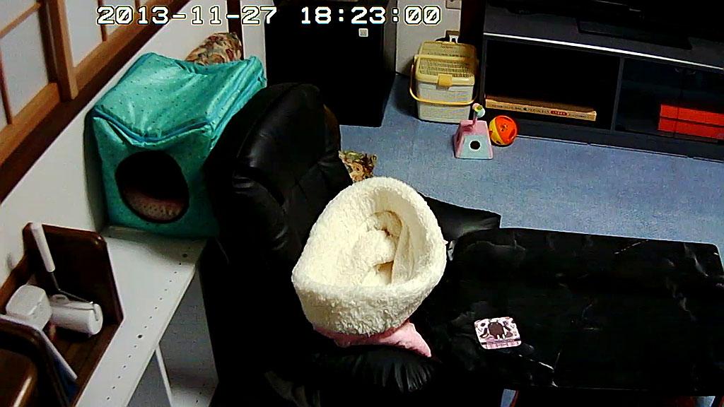 通常のWebカメラからの写真。