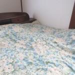 布団の中で寝るロシ子。