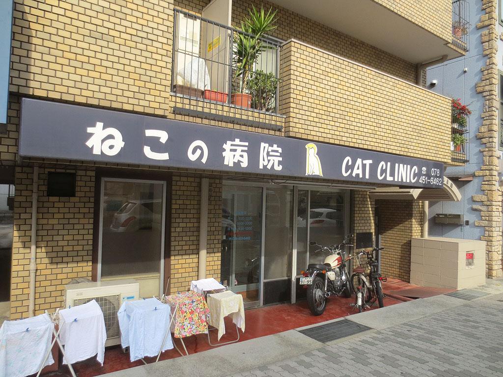 猫専門の動物病院さん。