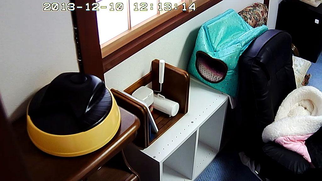 自動給餌器をカメラ前にセット。