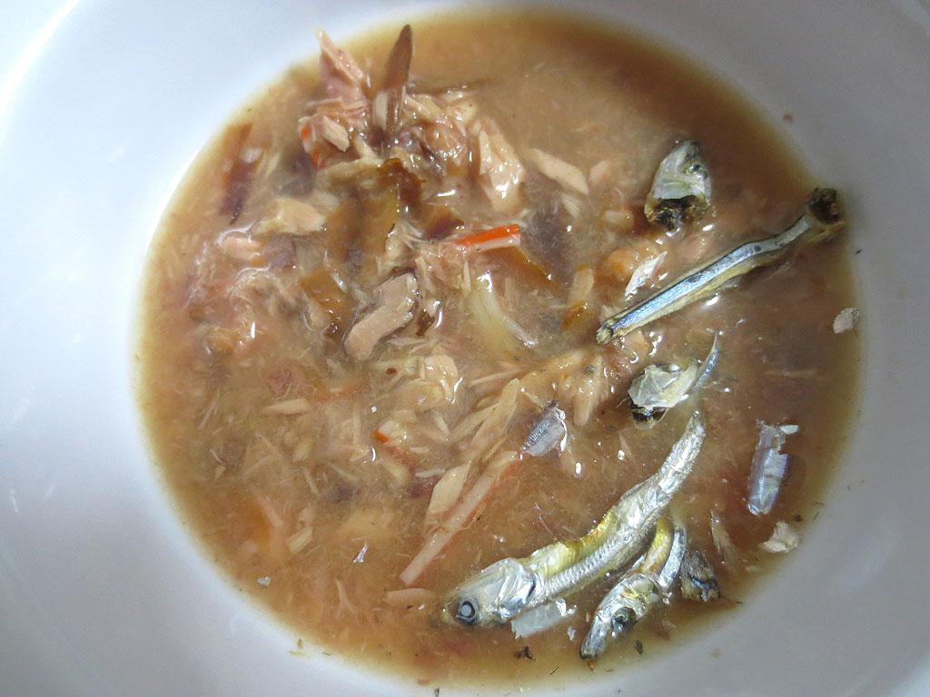 ロシ子の特別晩ご飯の完成。