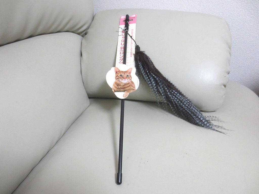 ロシ子の新しいおもちゃ。