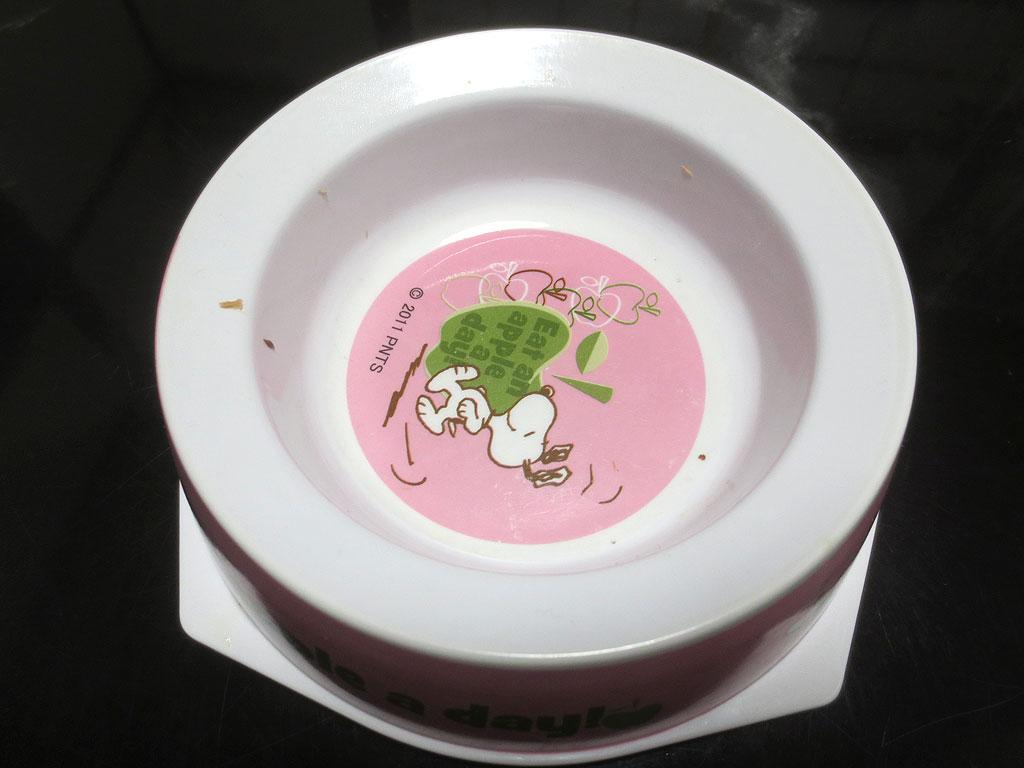 空のお皿です。