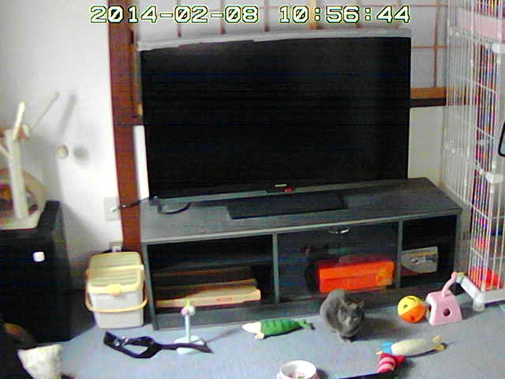 スマホのWebカメラの写真。