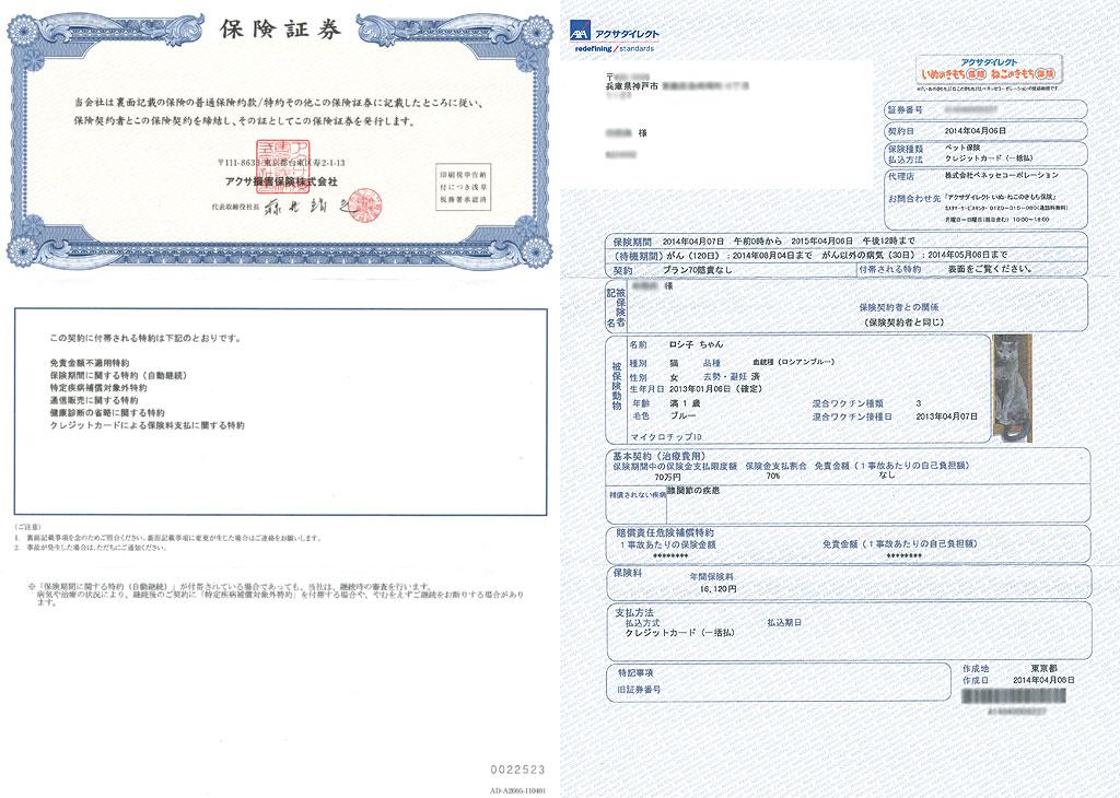 ロシ子のペット保険の証券。