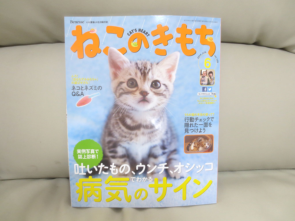 雑誌「ねこのきもち」5月号です。