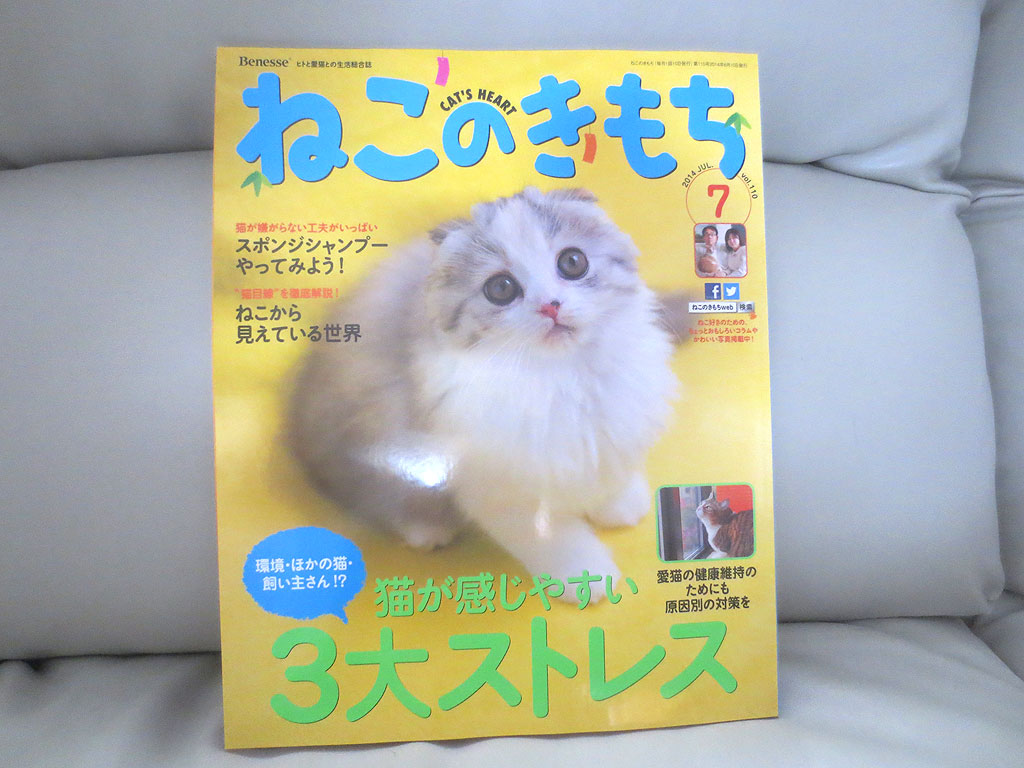 雑誌「ねこのきもち」です。