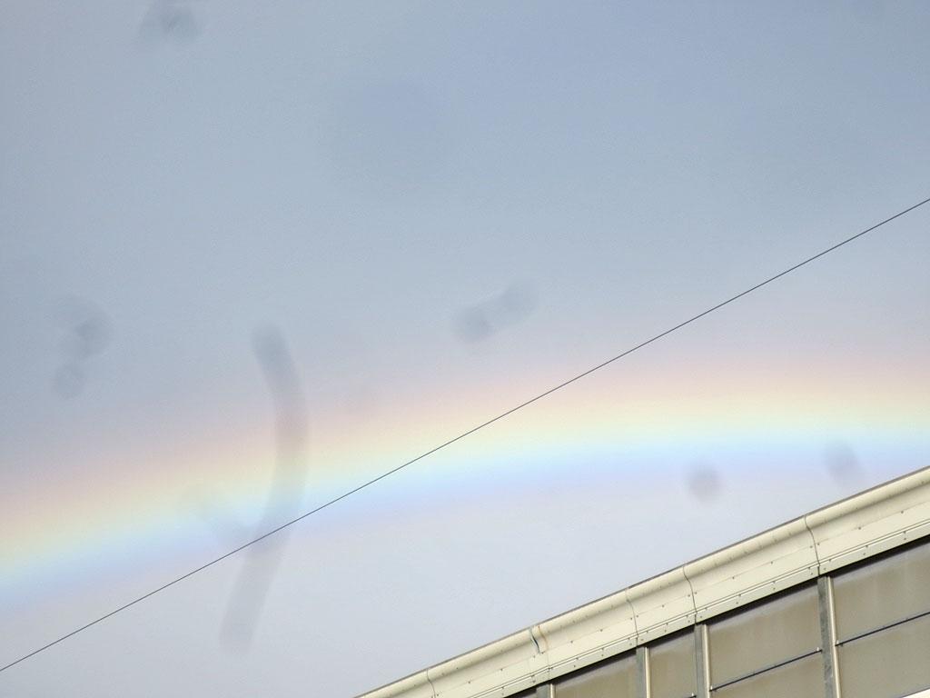 虹が出ていました。