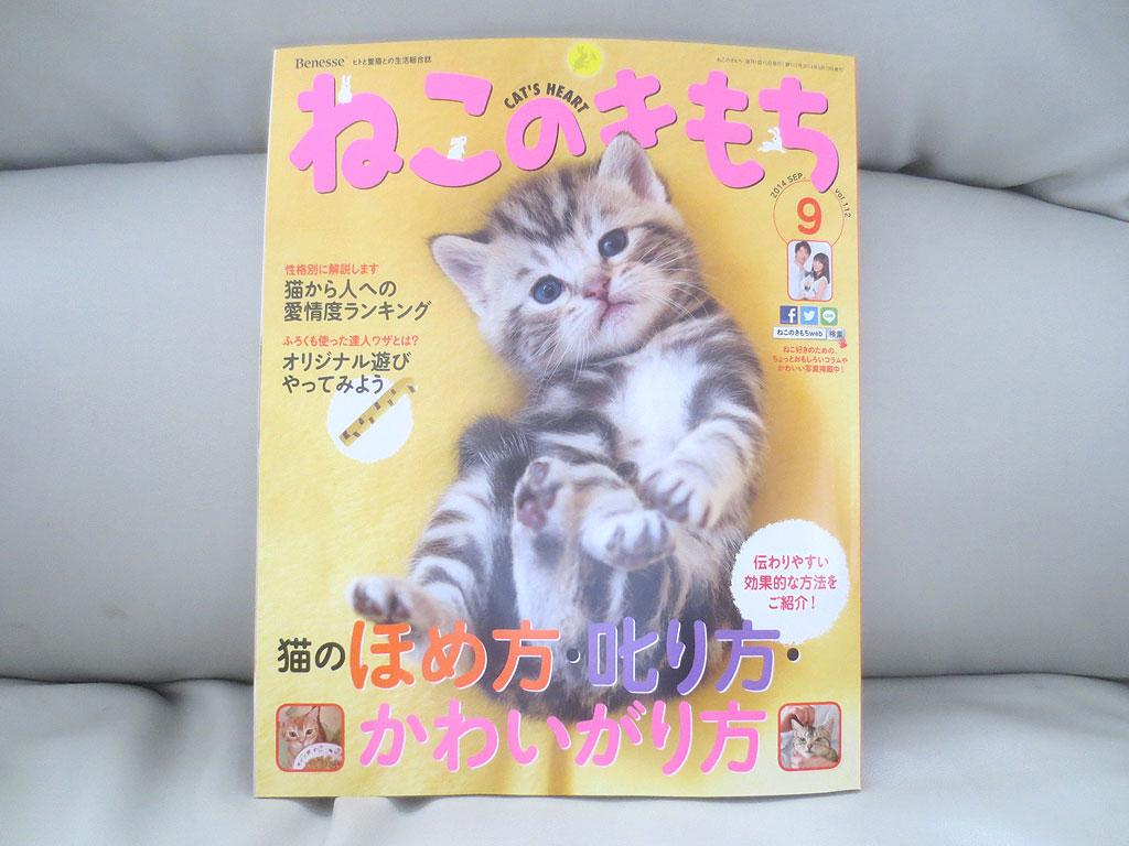メインの雑誌です。