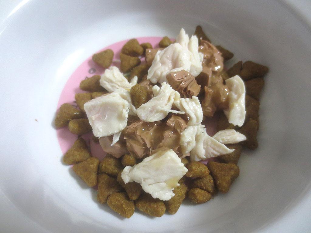 鶏肉入りのロシ子のご飯。
