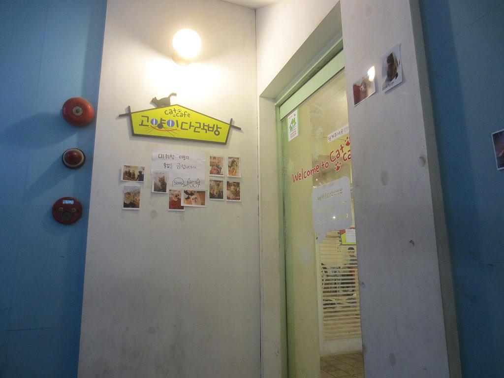 4階の猫カフェの入口です。