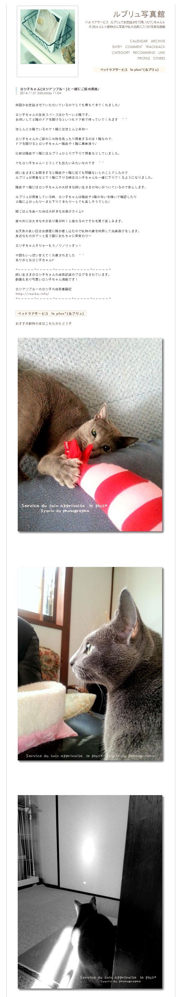 ペットシッターさんのサイトです。