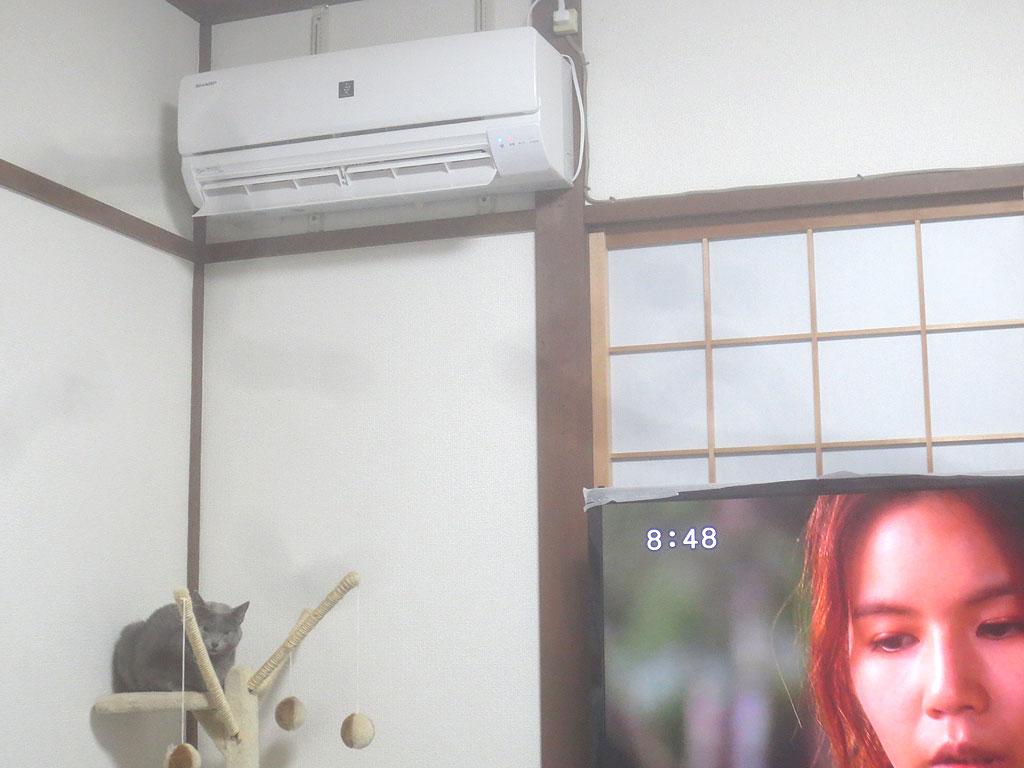 おとといから暖房を付けました。