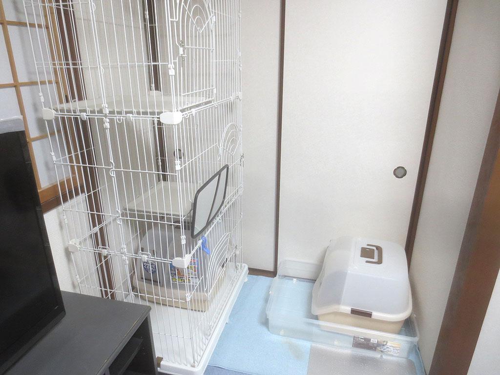 ロシ子とアビのすけのトイレ。