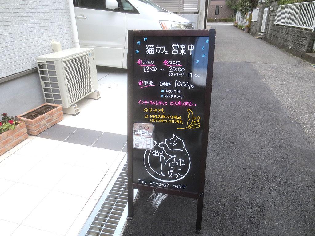 「猫のひなたぼっこ」さんの看板。
