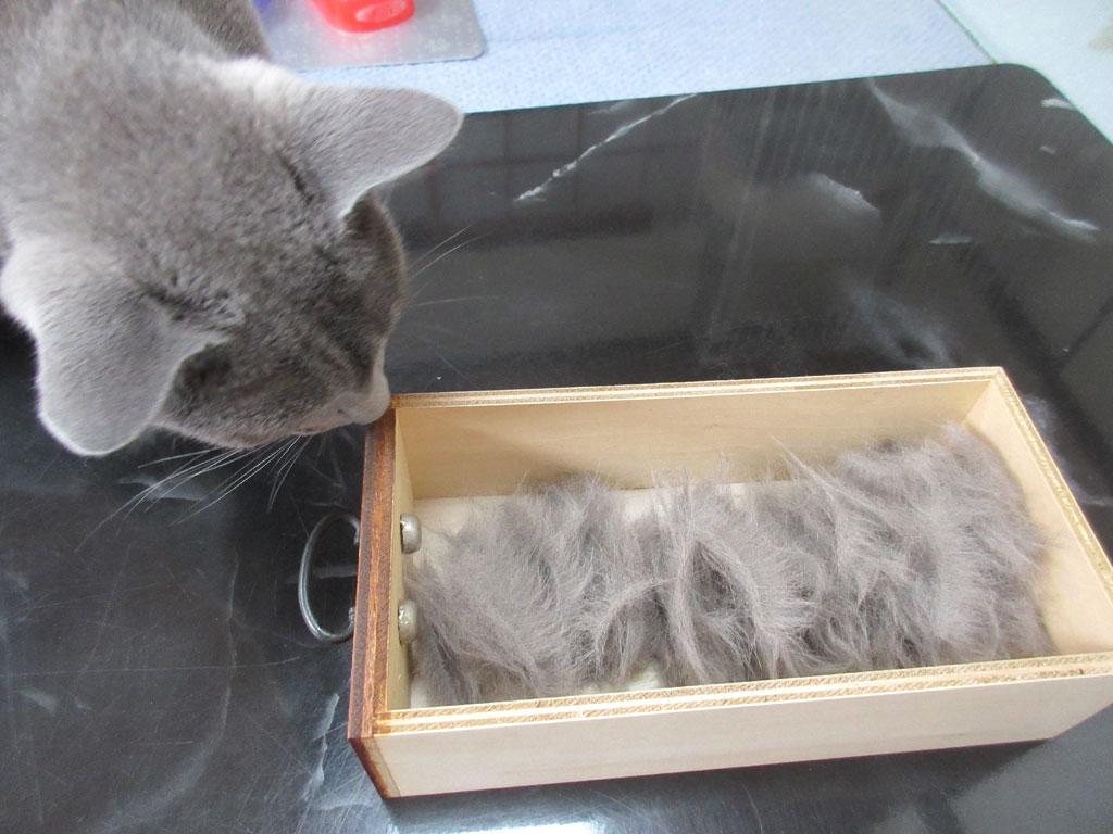 溜まったロシ子の抜け毛。