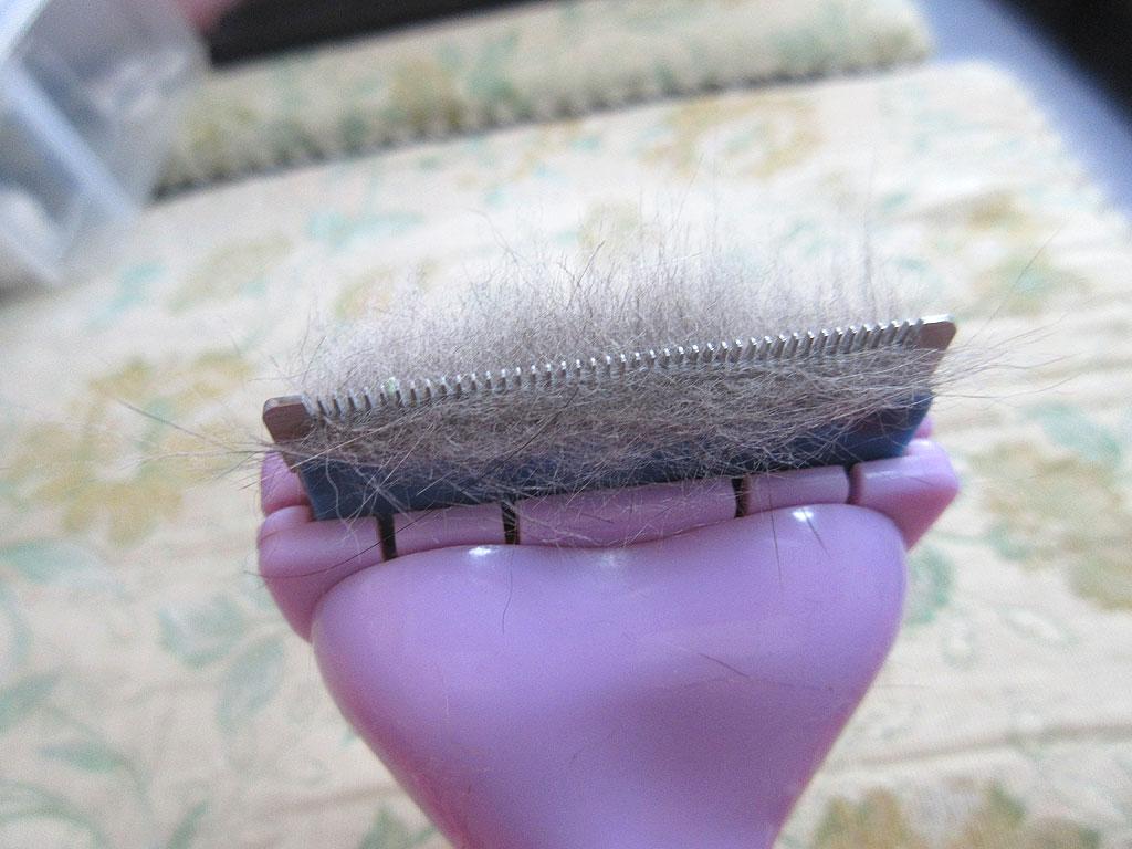 1回のブラシの抜け毛。