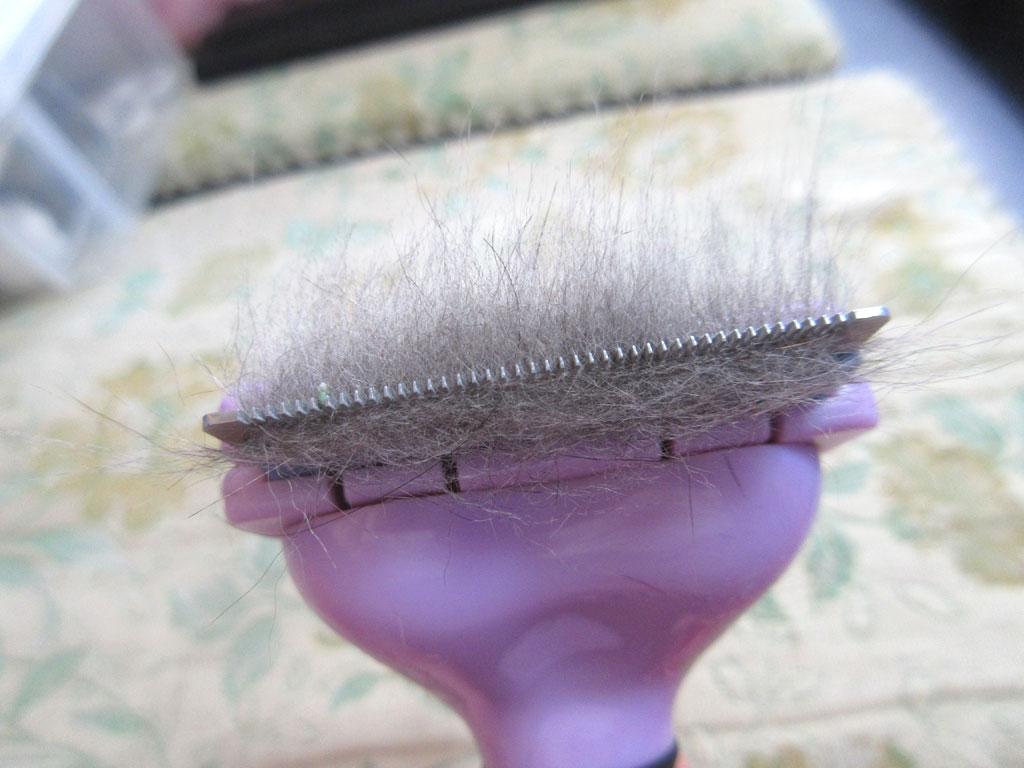 1回分の抜け毛の量。