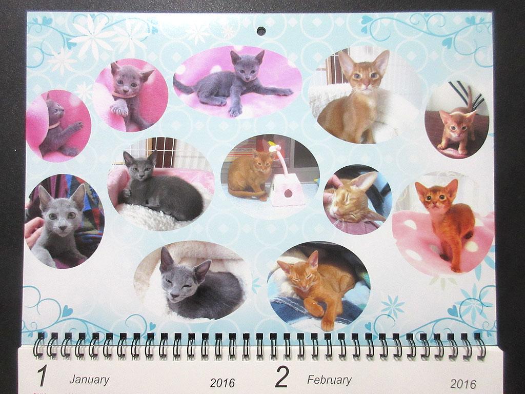 ロシ子とアビのすけのカレンダー、1月・2月。