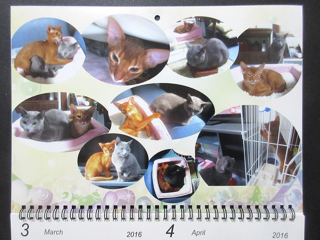 ロシ子とアビのすけのカレンダー、3月・4月。