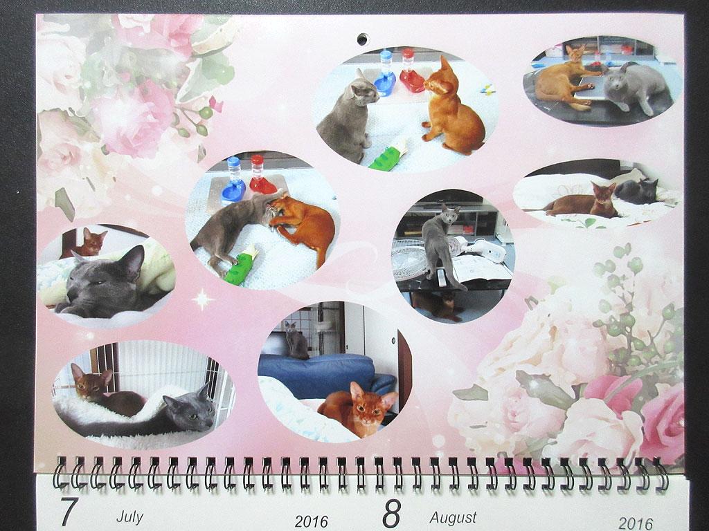 ロシ子とアビのすけのカレンダー、7月・8月。