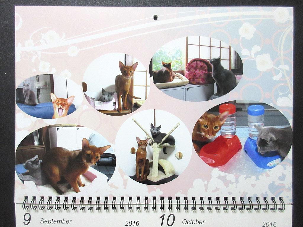 ロシ子とアビのすけのカレンダー、9月・10月。
