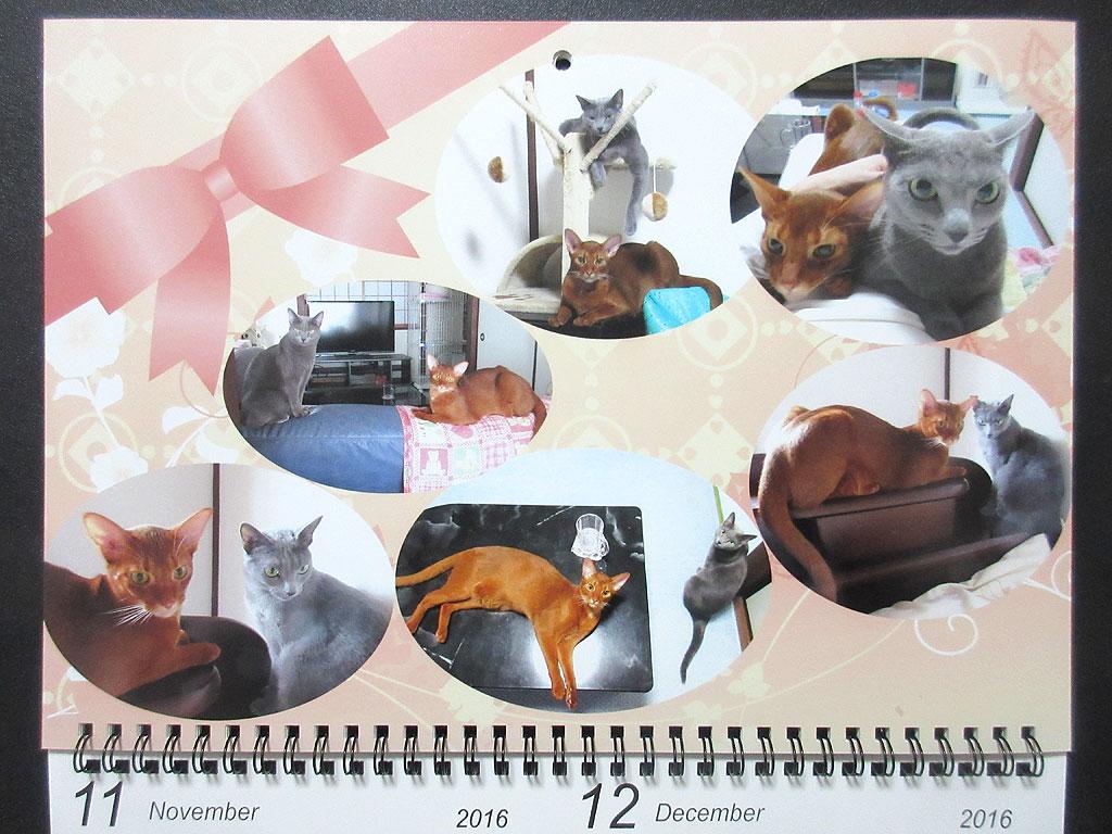 ロシ子とアビのすけのカレンダー、11月・12月。