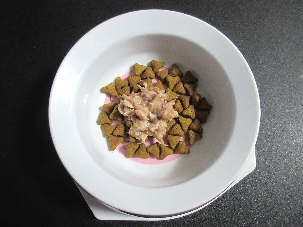 ロシ子に新しいご飯を準備。
