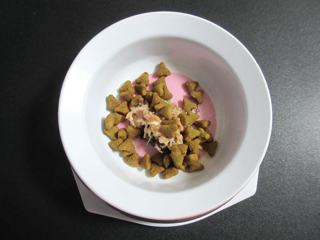 ロシアンブルーのロシ子の朝ご飯。