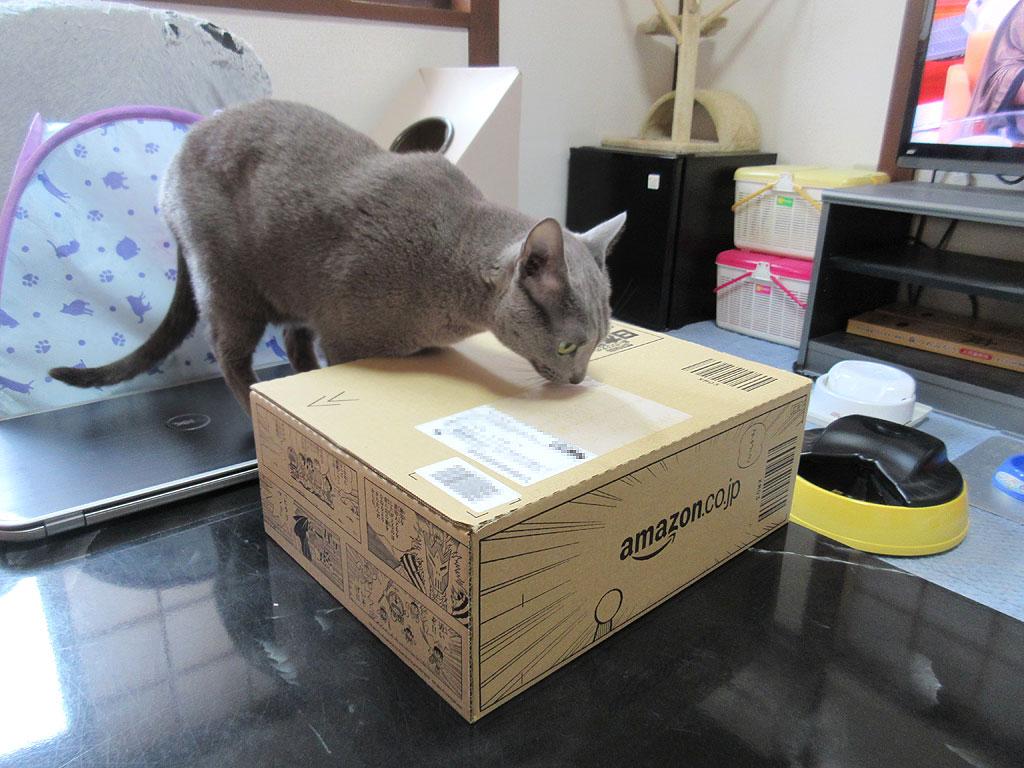 Amazonの箱がお洒落。