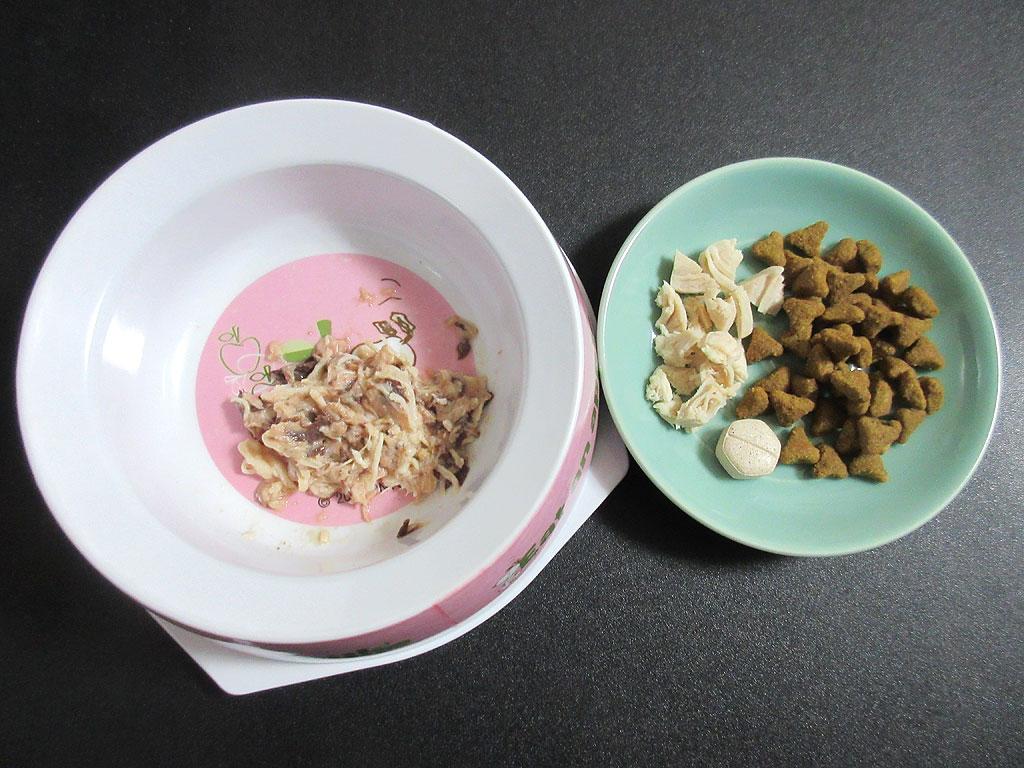 ロシ子のこの日の晩ご飯。