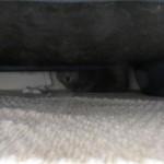 ソファーの下に隠れるロシ子。
