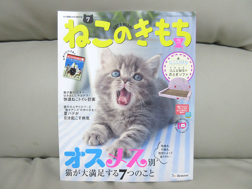 「ねこのきもち」の雑誌本体。