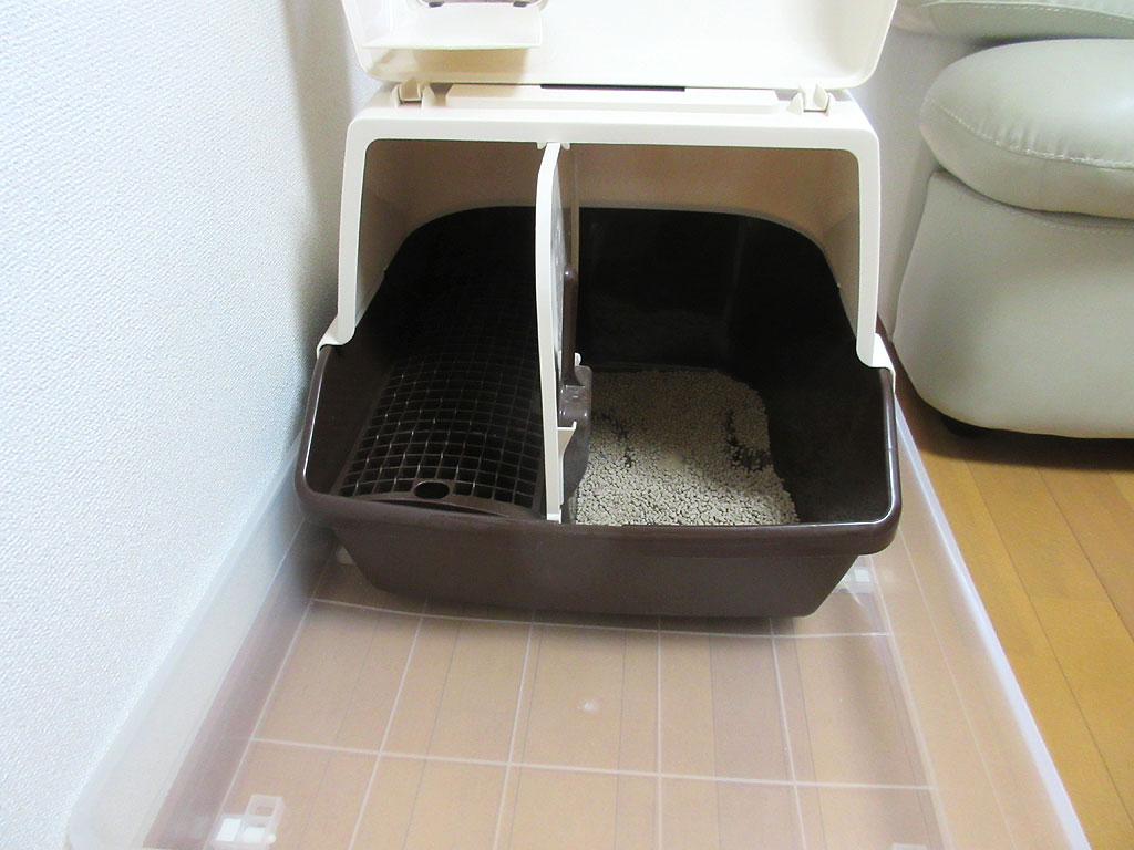猫砂に問題あり。