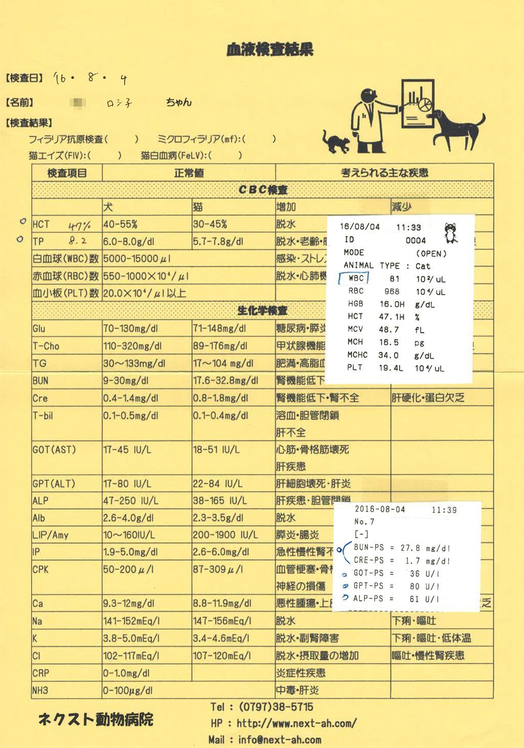 ロシ子の血液検査表。