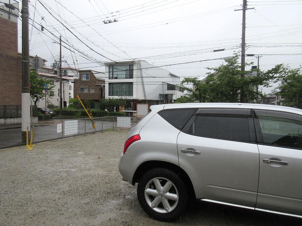 雨の中、ロシ子を動物病院へ。