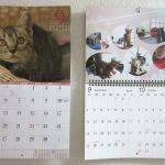 猫たちのカレンダー。