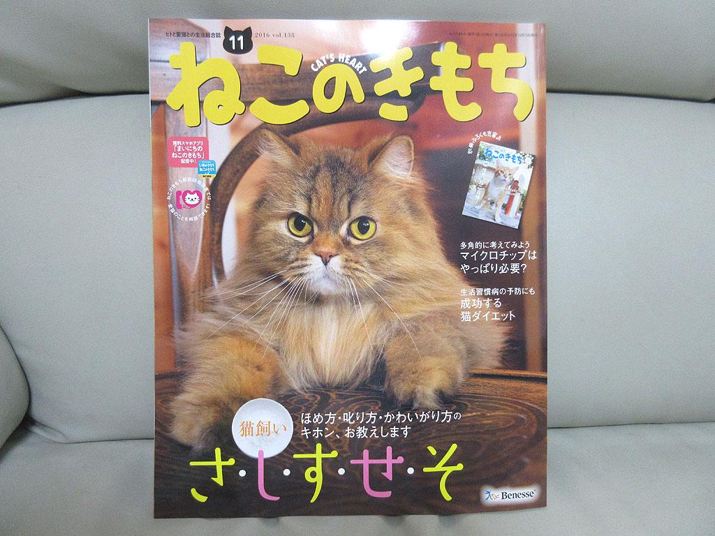 雑誌本体。