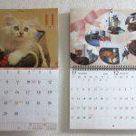 猫のカレンダー。