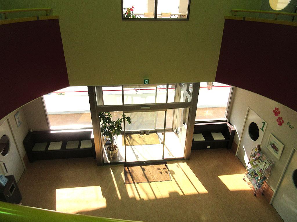 2階から1階を見下ろした風景。