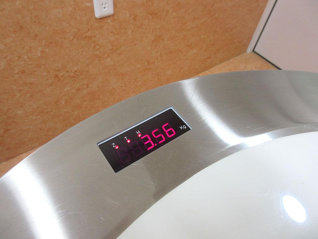 ロシ子の体重は3.56kg。