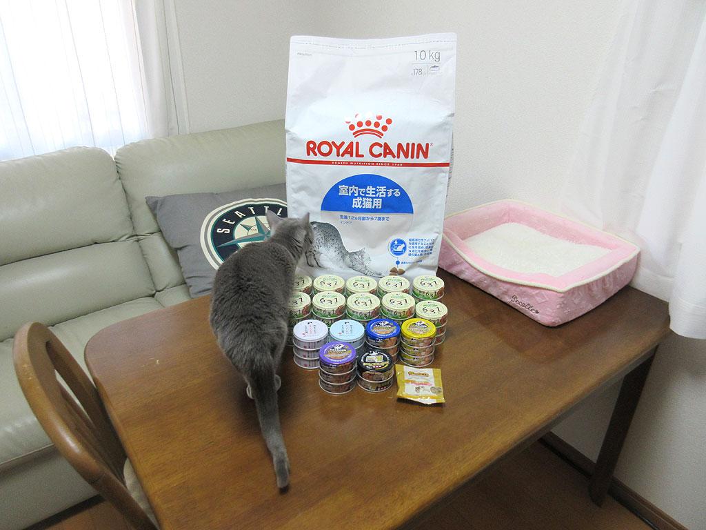 缶詰、カリカリとロシ子。