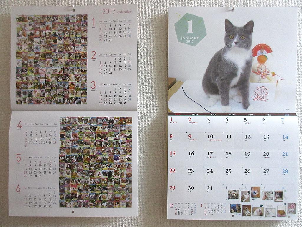 猫のきもちの1月のカレンダー。