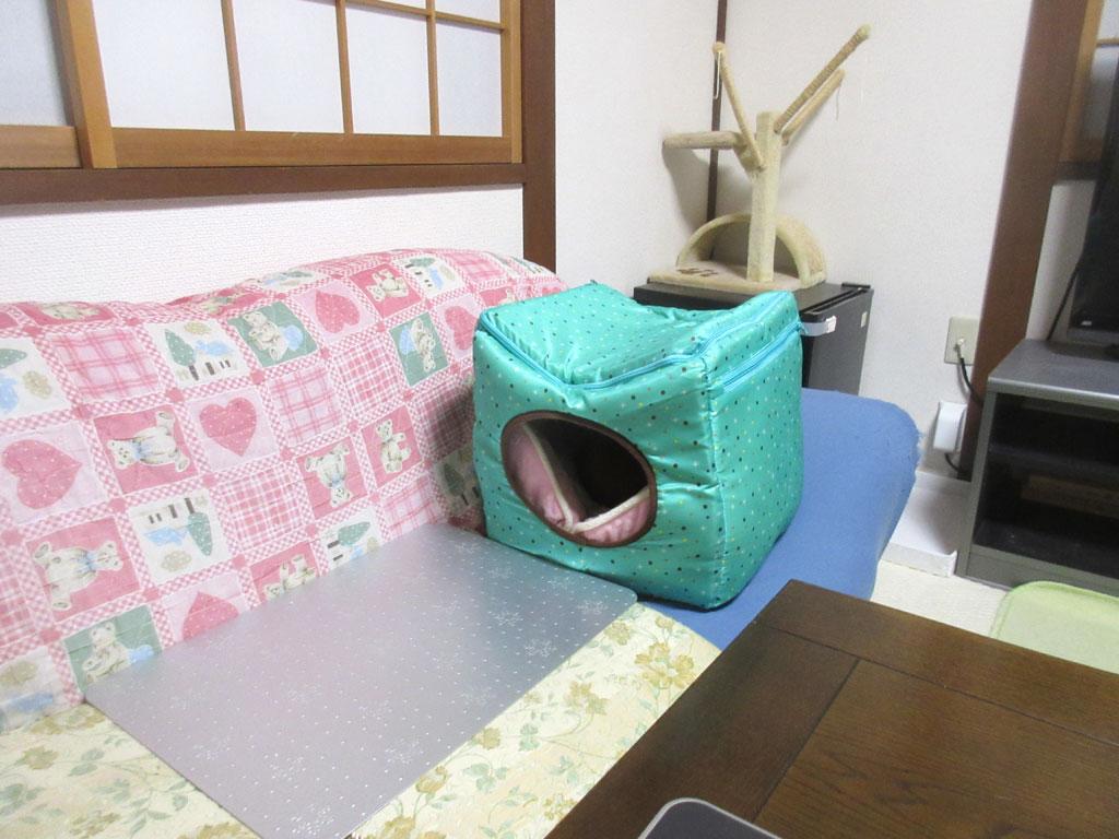 暖かクールボックスで寝る猫。