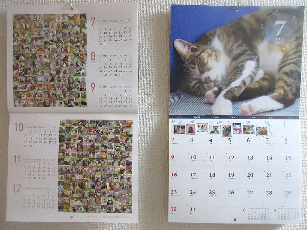 ねこのきもちのカレンダー。