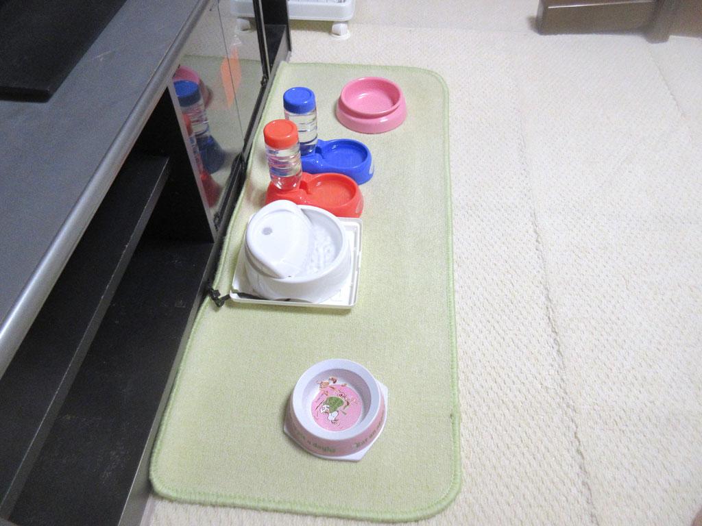 食後の猫たちのお皿。