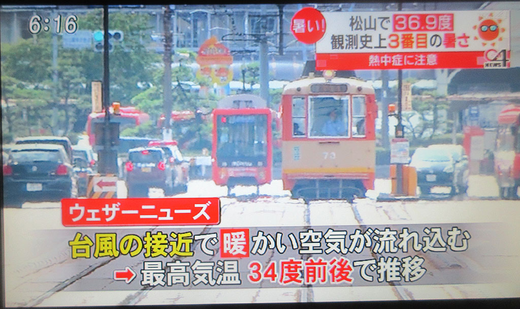 松山は暑い...。